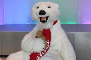 Flitterbären mit dem Coca Cola Bären