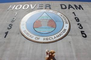 Die Bären am Hoover Dam