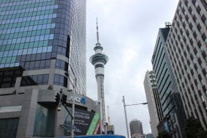 Der Sky-Tower in Auckland