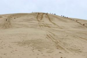 Beim Sand-Boarden