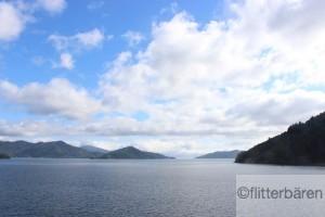 Zwischen Nord- und Südinsel