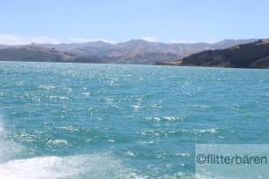 und Akaroa vom Wasser aus